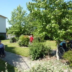 Jardin 1