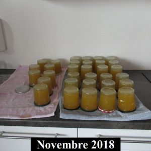 2018-11-32