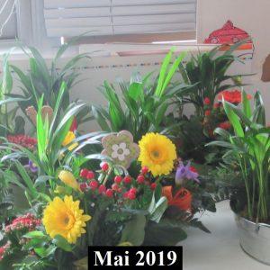 2019-05-48