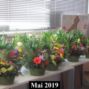 2019-05-50